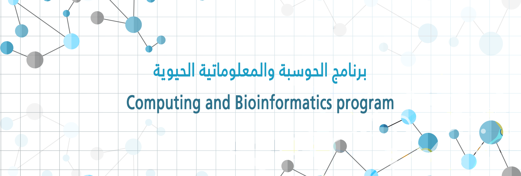 Computing and Bioinformatics program